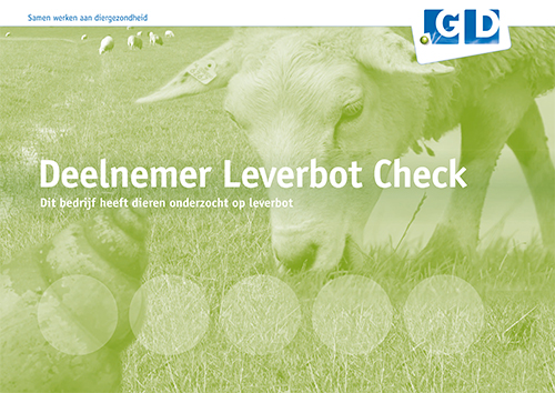bordje leverbotcheck